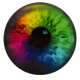 Dynamic Discs Junior Judge DyeMax Colorful Eyeball